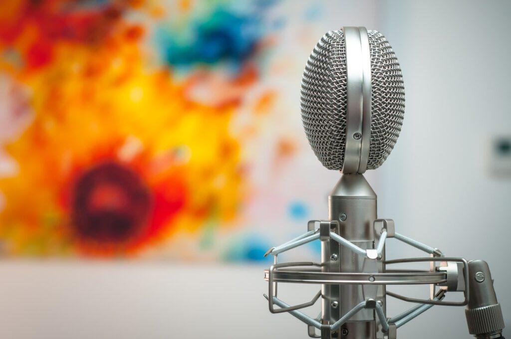 sound reducing foam microphone