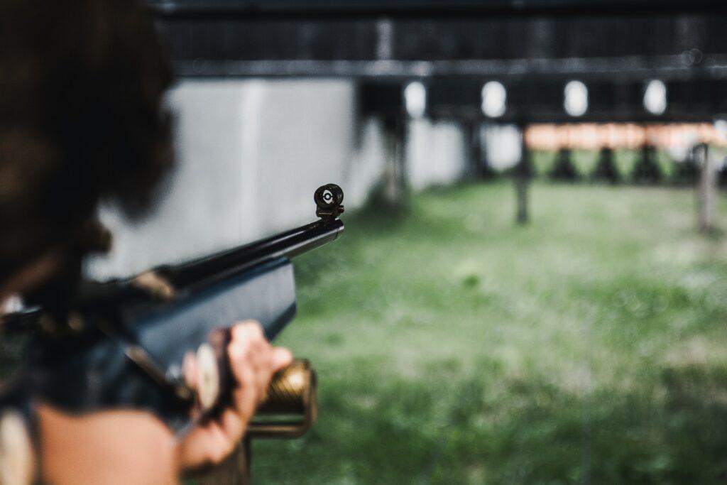 quietest pellet guns for backyard use